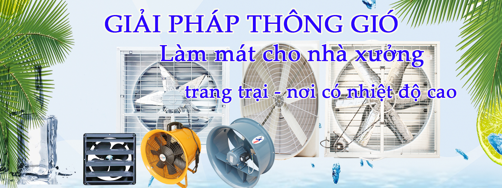 anh-chay-5